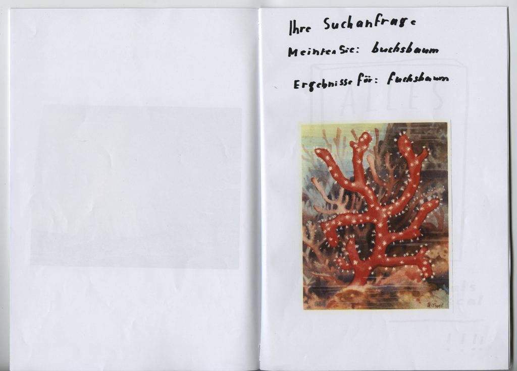 heft5_fuchsbaum060-k